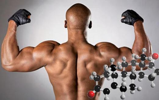 Тестостерон соло курс — для тех, кто хочет быть сильнее