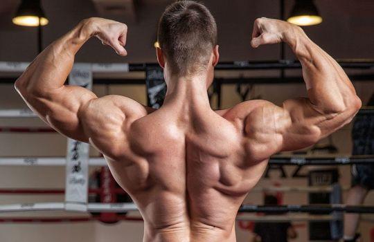 Как прокачать спину в спортзале?