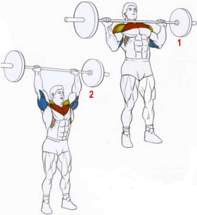 Упражнения армейский жим