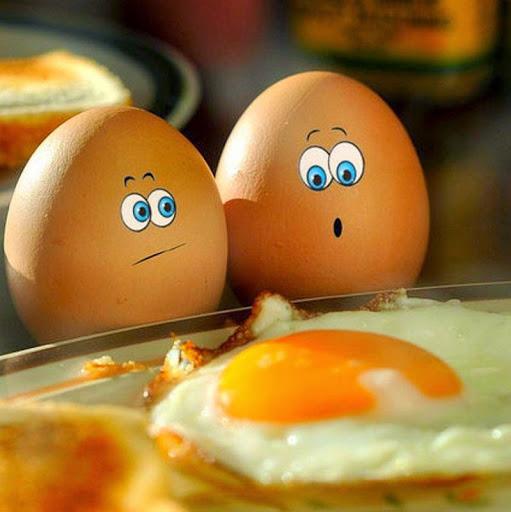 Правильное питание, правильное питание по утрам, завтрак ПП, меню ПП, продукты вредные на завтрак, продукты не ПП