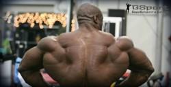 Программа тренировок на объем мышц
