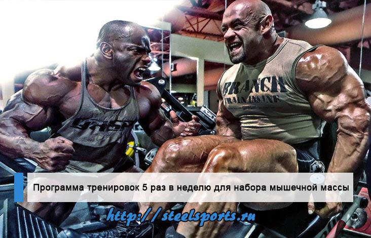 Мегаэффективная (лучшая) программа тренировок 5 раз в неделю для набора мышечной массы и силы.