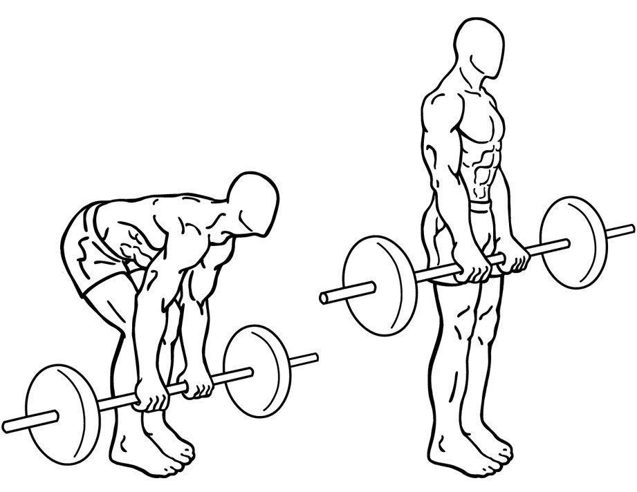 Примеры физических упражнений