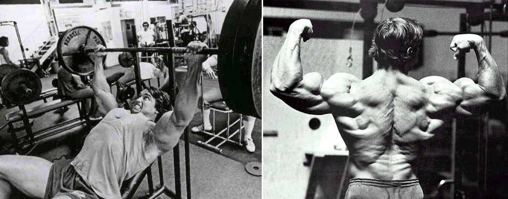 Тренировка груди и спины в один день