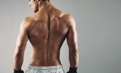 Мышцы сгибатели позвоночника