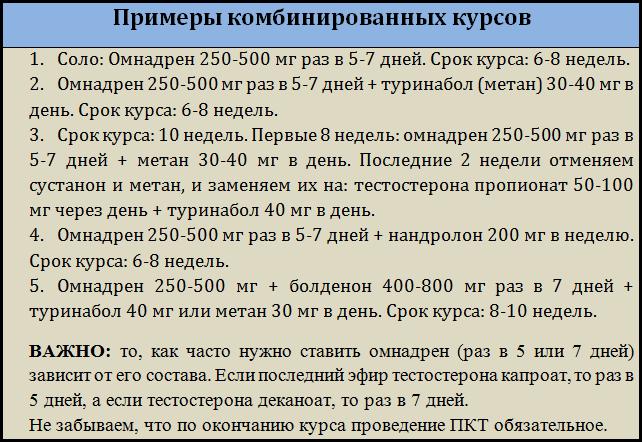 картинка_примеры_курсов_омнадрена