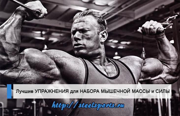 В статье рассказывается про самые лучшие упражнения для набора мышечной массы и силы.