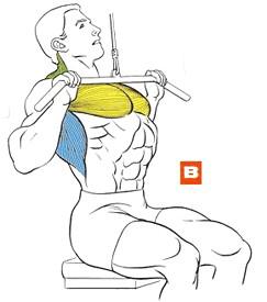 Тяга вертикального блока к груди (нижняя позиция)