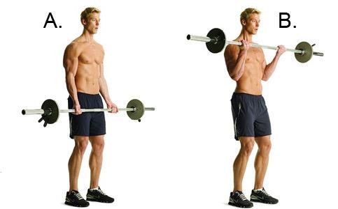 podem-shtangi-na-biceps