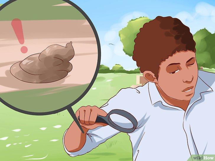 Изображение с названием Check Your Health by Poop or Stool Colors Step 1