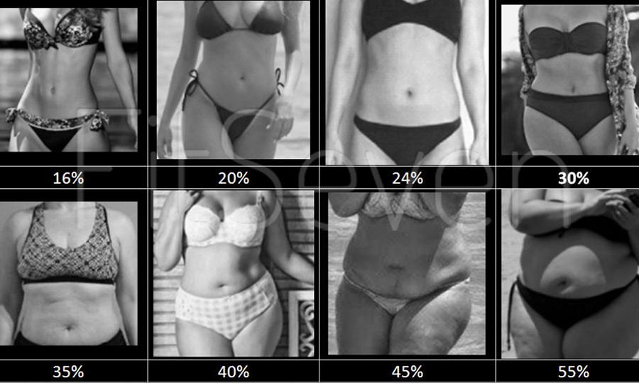 Как измерить уровень жира?