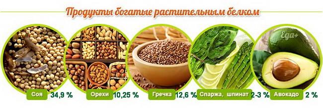 Польза и вред вегетарианства: научные исследования, статистика, мнение врачей
