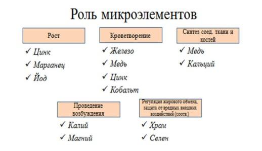 Признаки дефицита минералов ^