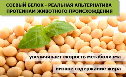 Полезные свойства соевого белка