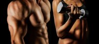 Тренировки для набора мышечной массы: готовые трехдневные программы