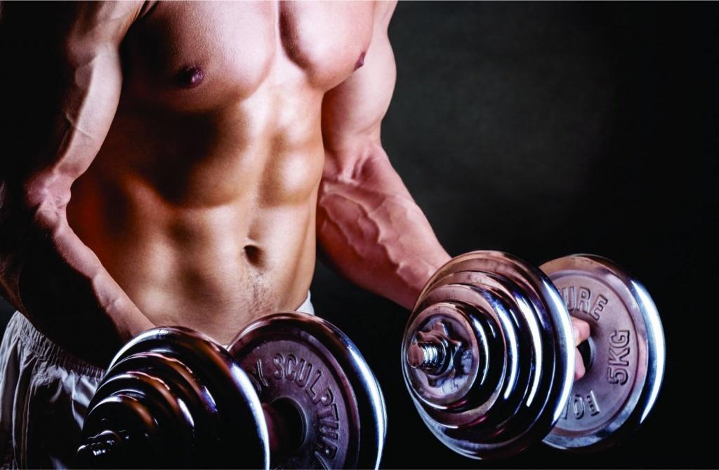 Musculação.jpg
