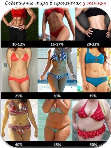 как рассчитать процент жира в организме женщине