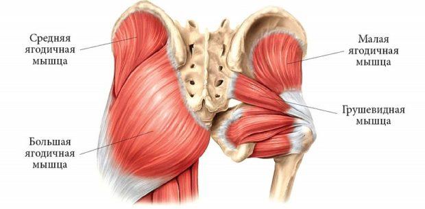 Синдром грушевидной мышци