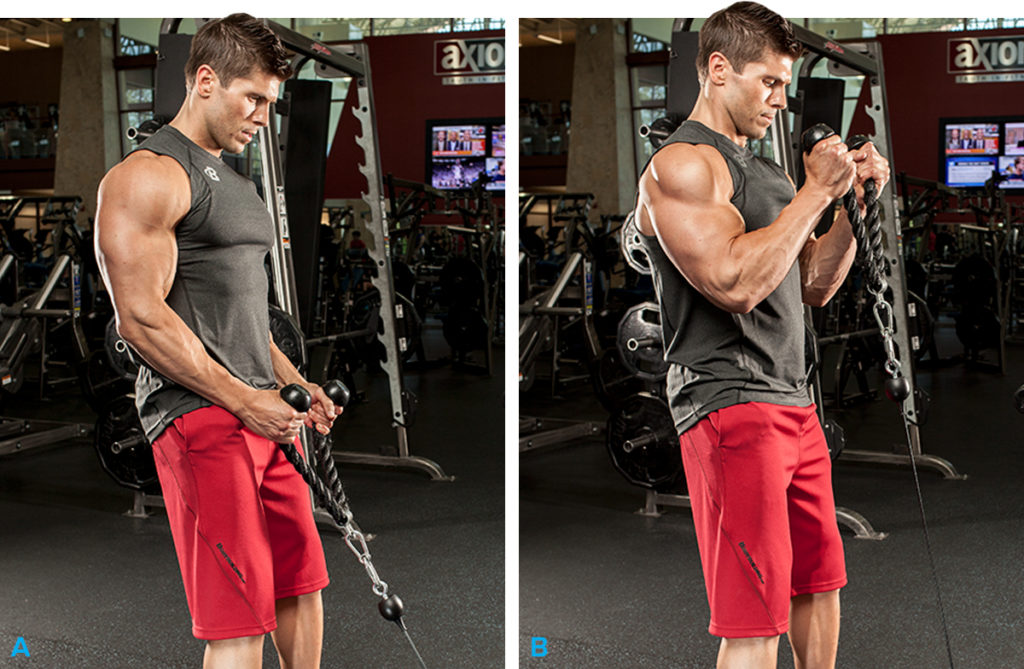 sgibanie-na-biceps-s-kanatom